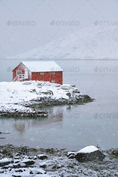 Red rorbu house in winter, Lofoten islands, Norway