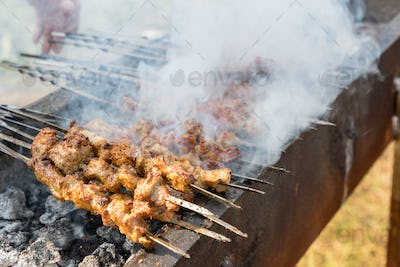 delicious food of xinjiang roast lamb kebabs, outdoor barbecue