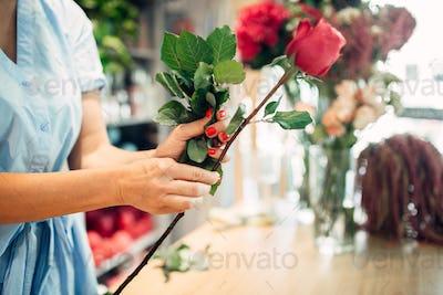 Female florist holds fresh red roses flower shop