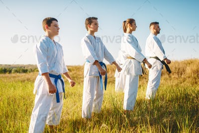 Karate group with master in white kimono