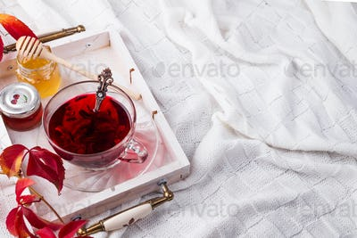 Hot healthy rose tea with honey on wooden tray with autumn fallen leaves on knitted warm woolen