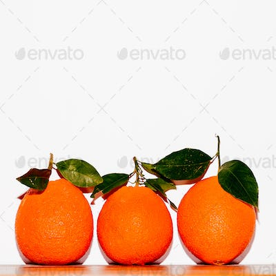 Fresh Oranges on a white wall background