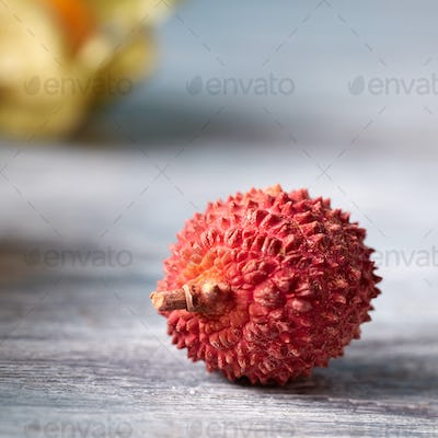 One fresh red ripe lychee, Litchi chinensis tropical fruit isolated on gray background