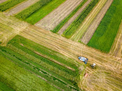 Aerial view frome a drone of combine plowing the ground after harvesting on the field in the autumn