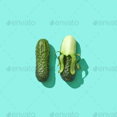 Organic cucumbers, whole and half peeled, presented on a blue background with shadow and space for