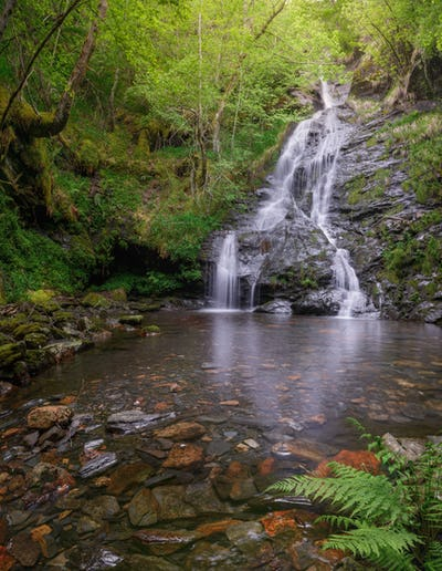 A waterfall emerges among dense deciduous forests