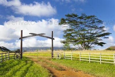 Kauai Farm Landscape, Hawaii