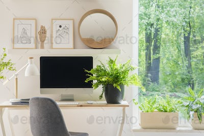 Grey chair at desk with plant in bright home office interior wit