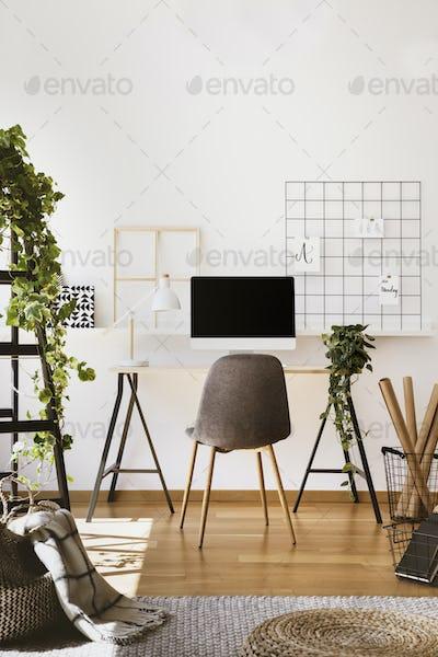 Plant, white lamp and desktop computer on desk in freelancer's i