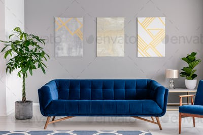 A dark blue velvet couch in front of a gray wall with graphic pa
