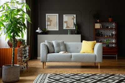 Real photo of a living room interior with a sofa, tree, painting