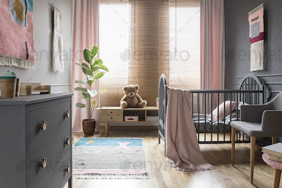 Teddy bear on wooden cupboard next to ficus in child's bedroom i