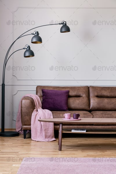 Lamp next to couch with pink blanket in white living room interi