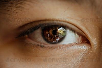close up macro of eyes