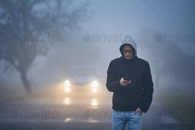 Thick fog on roadside