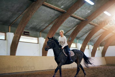 Woman on a horse riding fast