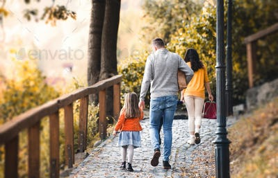 A rear view of young family with children walking in park in autumn.