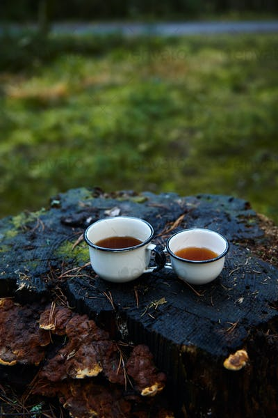 Two white cups of hot tea on the old stump
