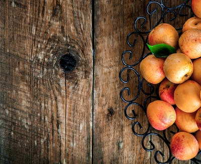 Bowl of harvested apricots.  Fresh apricots on wooden backgroun