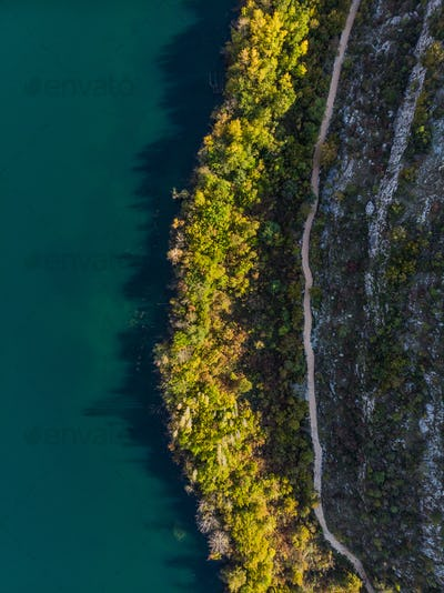 Colorful trees at lake edge, top down drone view