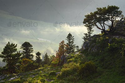 Mountain landscape with fog and sunlight