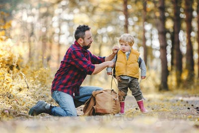 A mature father putting a backpack on a toddler son in an autumn forest.