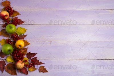 Fall greeting with apples, viburnum and red leaves, copy space