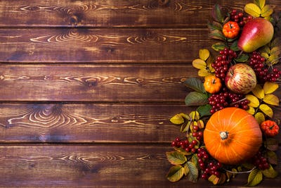 Thanksgiving rustic frame with pumpkins, copy space
