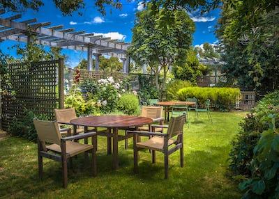 Home backyard summer garden