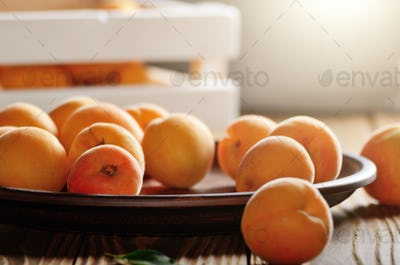 Clay dish with ripe apricots on wooden table