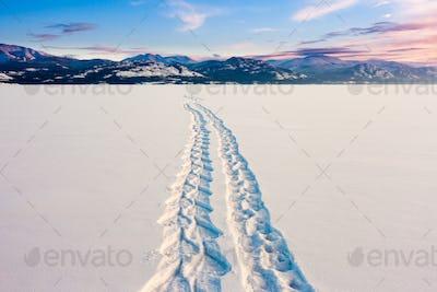 Lake Laberge snowshoe tracks Yukon Canada