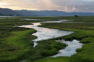 Knysna wetlands at sunset