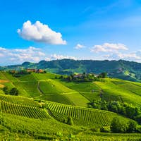 Langhe vineyards sunset panorama, Serralunga Alba, Piedmont, Ita