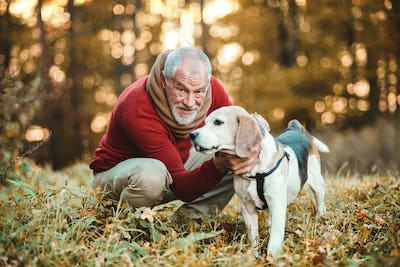 A senior man with a dog in an autumn nature at sunset.