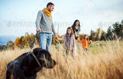 A young family with two small children and a dog on a walk in autumn nature.