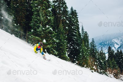 snowboarder is riding mountain forest
