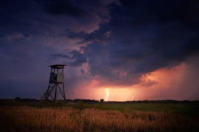 Hunter's ambush in the stormy field