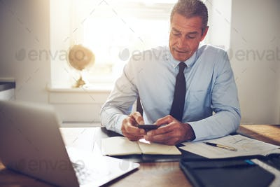 Mature businessman sitting at an office desk using a cellphone