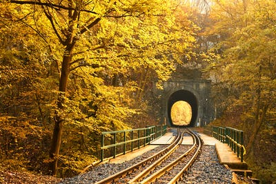 Railway in autumn forest