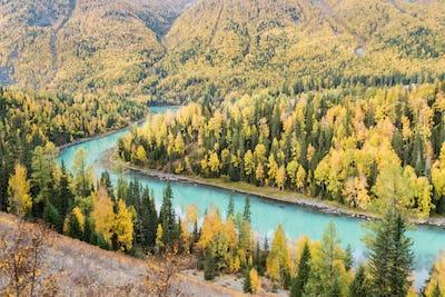 beautiful xinjiang kanas autumn landscape