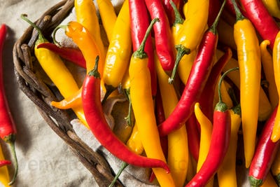 Organic Assorted Spicy Hot Peppers