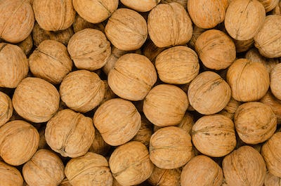 Walnuts background close up, pile of unshelled nuts