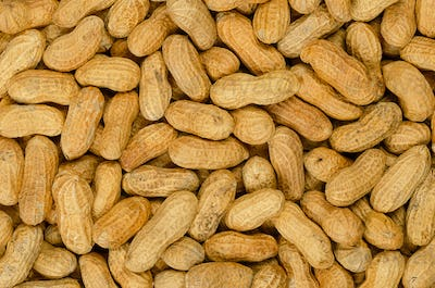 Peanuts with shell, background, macro food photo