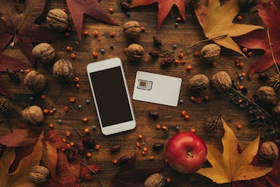 Mobile phone and SIM card with autumn arrangement