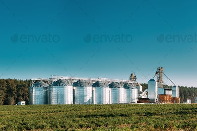 Granary, Grain-drying Complex, Commercial Grain Or Seed Silos In