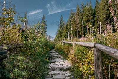 Tatra National Park, Poland. Hiking Trails In Summer Tatra Mount