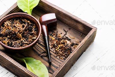 Smoking tobacco pipe