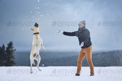 Man playing with dog in winter landscape