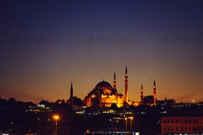blue masque in Istanbul