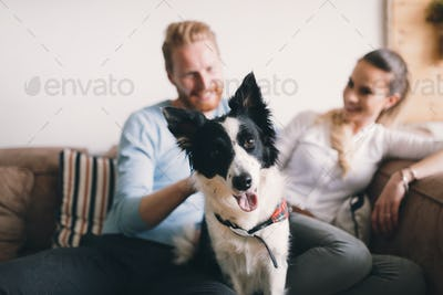 Beautiful couple relaxing at home and loving their dog
